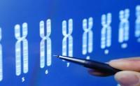 مدخل إلى علم المعلوماتية الحيوية (Bioinformatics) (الجزء الثاني)