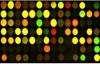 تقنية رقائق الحمض النووي الدقيقة (DNA Microarray) {الجزء الثاني}