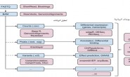 التعامل مع السلاسل البيولوجية بلغة الآر (الجزء الثاني)