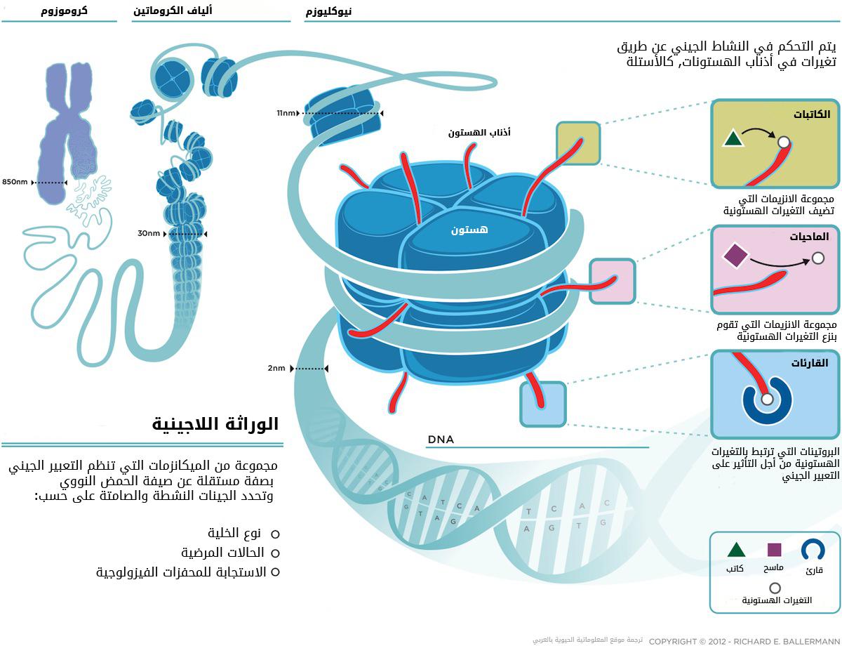 rvx_epigenetics_2