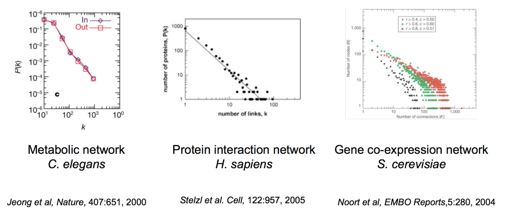 توزع درجة تفاعل البروتينات في  في شبكات حيوية مختلفة